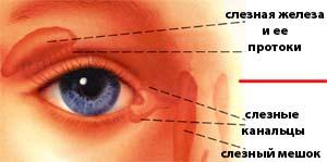 Массаж глаз новорожденного
