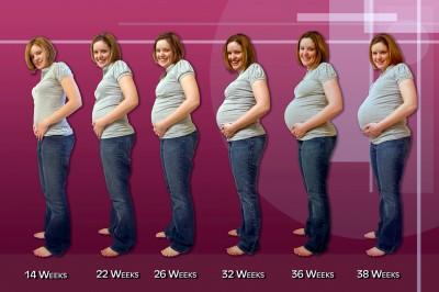 Pregnancy-Progression-1950