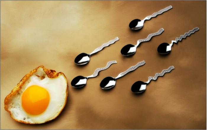 Яйцеклетка и овуляция: как много тайн в одной процессе