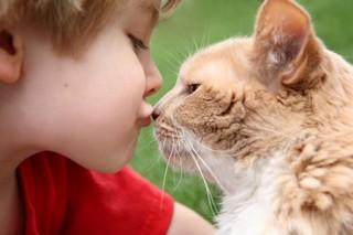 Заражению глистами подвержены дети любого возраста