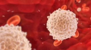 Присутствие бактериальной флоры в мочеполовой системе женщины является нормальным