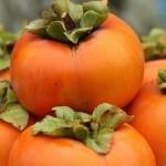 Хурма при грудном вскармливании: можно ли увлекаться солнечной ягодой