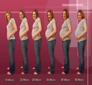 Виден ли живот на 2 месяце беременности