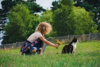 Причина заболевания - контакт с больным животным