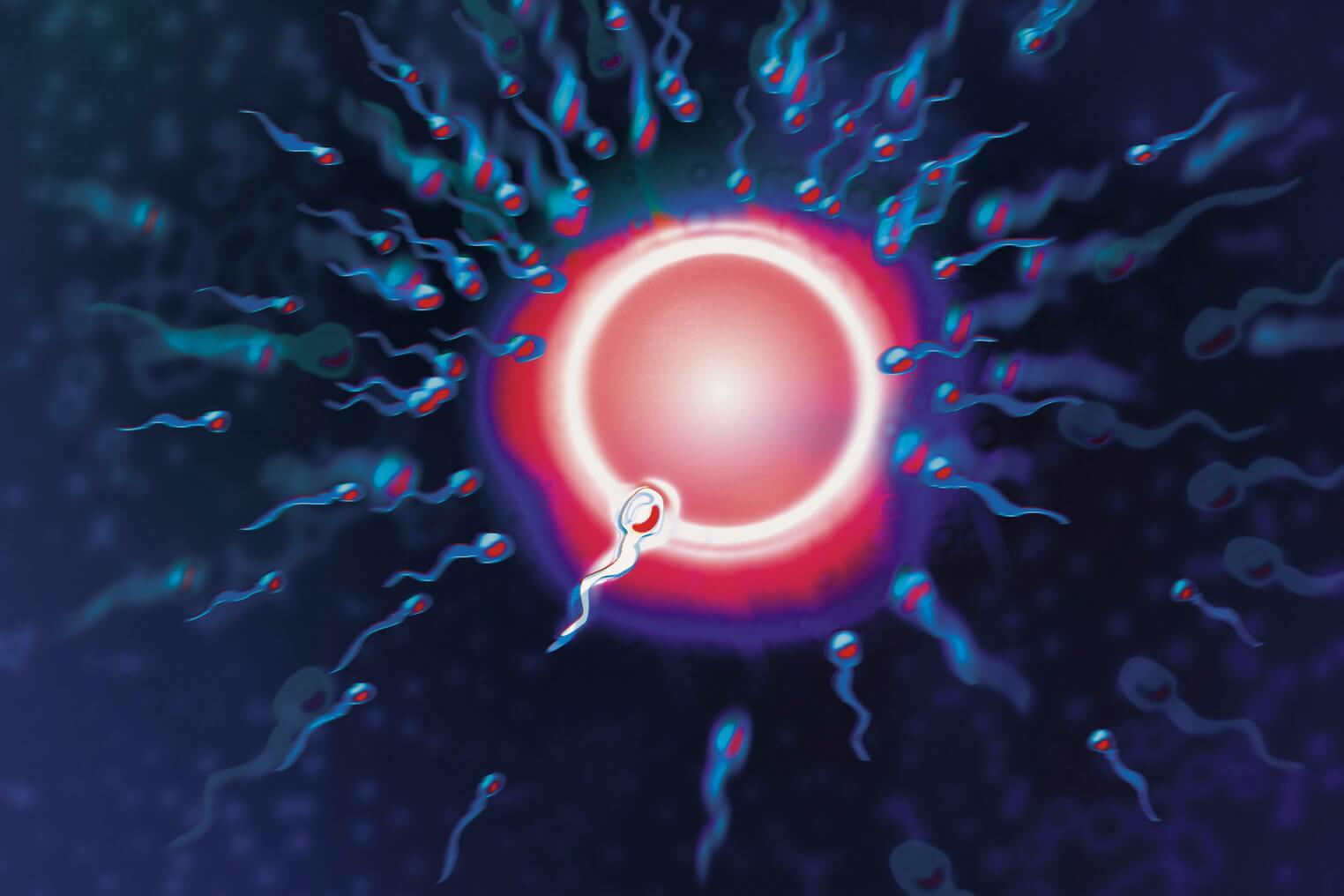 Удалена путь спермы Это кажется