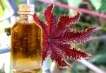 Касторовое масло при запорах: особенности действия