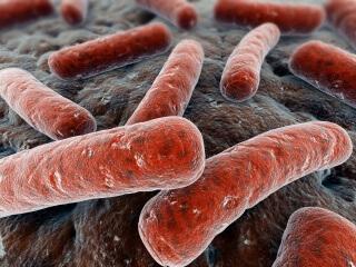 Развитие данной патологии происходит в момент образования дисбаланса между благоприятными и патогенными бактериями во влагалище