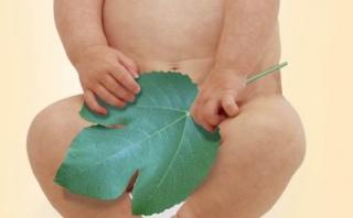 патология половых органов новорожденных - водянка, или гидроцеле