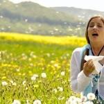 Что можно от аллергии при беременности: способы устранения симптомов недуга