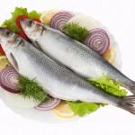 Можно ли селедку кормящим: что говорят специалисты?