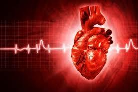 Экстрасистолия - форма сердечной аритмии