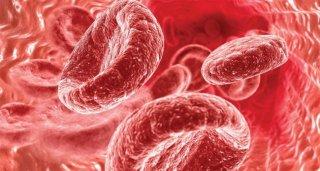 Норма гемоглобина - важный показатель состояния здоровья ребенка
