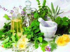 Мочегонные травы для детей: польза и противопоказания