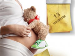 Как выглядит ребенок в 13 недель беременности: особенности начала второго триместра беременности