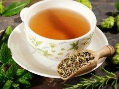 Можно ли беременным включить мятный чай в питьевой рацион?