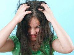 Как бороться со вшами: эффективная профилактика и действенные средства