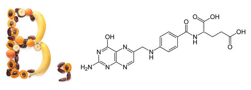 Выясняем вместе, в каких продуктах содержится фолиевая кислота