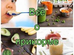 Первый прикорм в 4 месяца – основные рекомендации на пути к взрослению