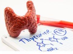 Симптомы, диагностика и лечение высокого ТТГ